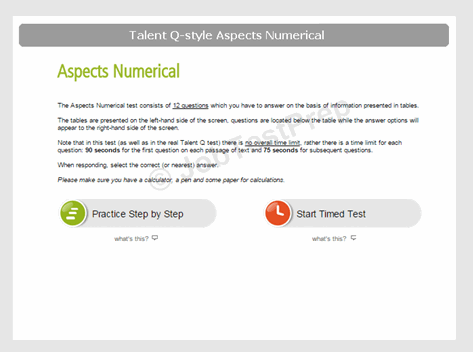 Talent Q–Style Aspects Numerical Test Preview