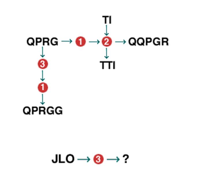 Diagrammatische Redeneertest voorbeeld 1