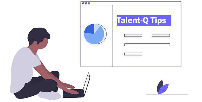 Talent-q numerical test tips